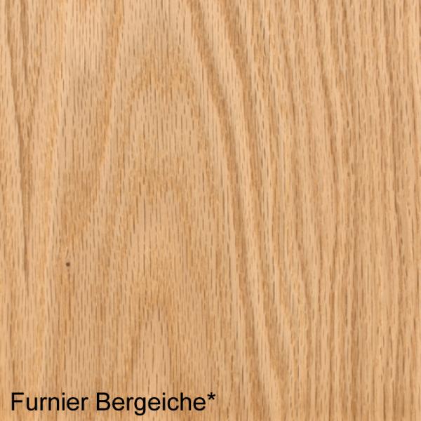 Bergeiche Mustertafel für Zimmertüren & Türzargen Furnieroberfläche